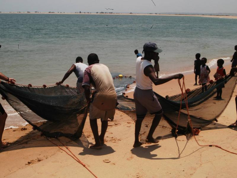 Assessment of the status of biodiversity along the Angola coastline.