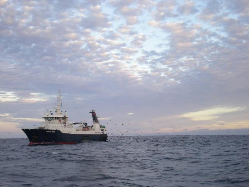 Offshore, boat-based fisheries monitoring programme
