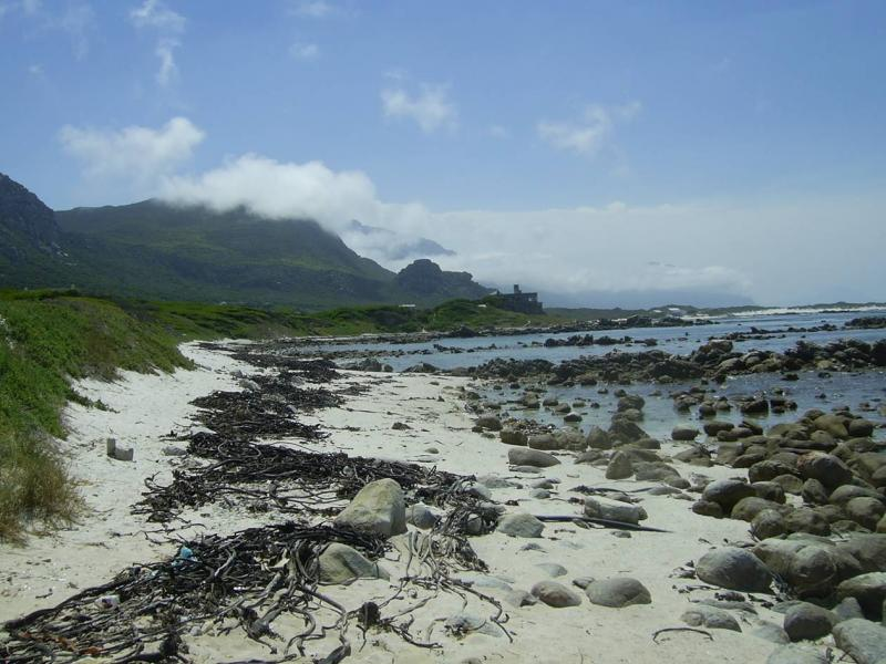 Ecology, value and management of the Kogelberg coast.