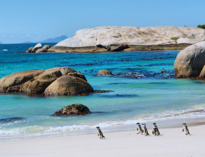Revision and update of the South African Water Quality Guidelines for Coastal and Marine Waters  2017: Natural Environment, Mariculture and Industrial Use
