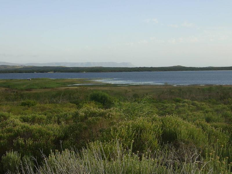 Environmental flows assessment for the Klein River estuary, South Africa.